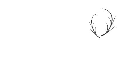 Logo (weiß) Elmi Pantina Gartenbau in Calw